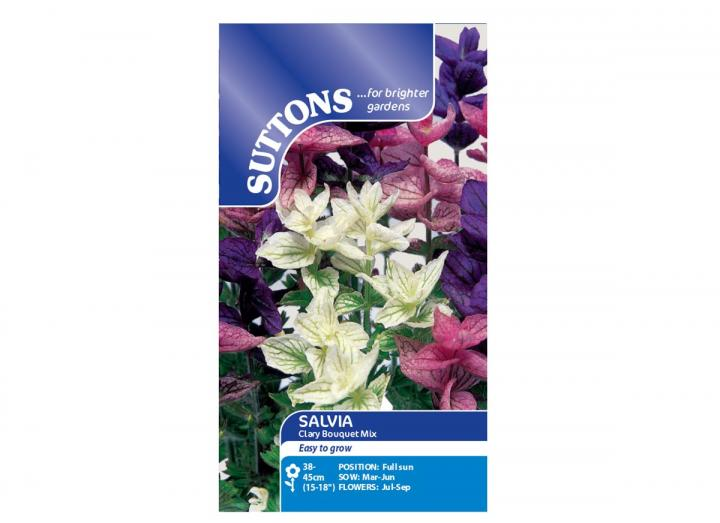 Salvia Clary Bouquet Mix seeds