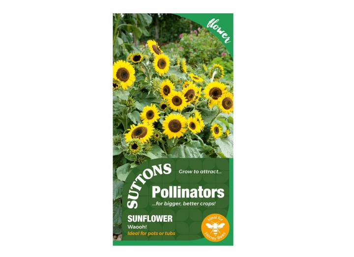 "Sunflower 'Waooh!"" seeds, part of the pollinators range from Suttons"