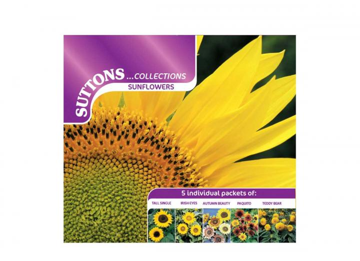 Suttons sunflower collection seeds