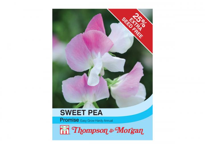 Sweet Pea 'Promise' seeds from Thompson & Morgan
