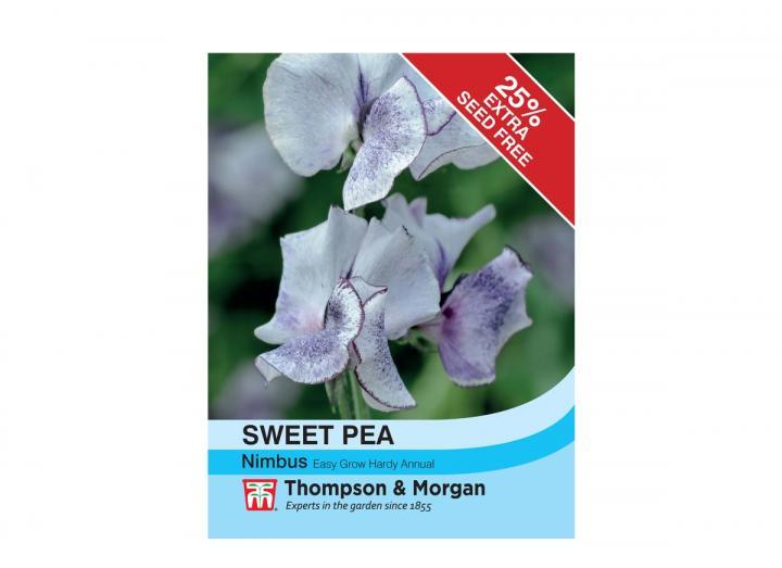 Sweet Pea 'Nimbus' seeds from Thompson & Morgan