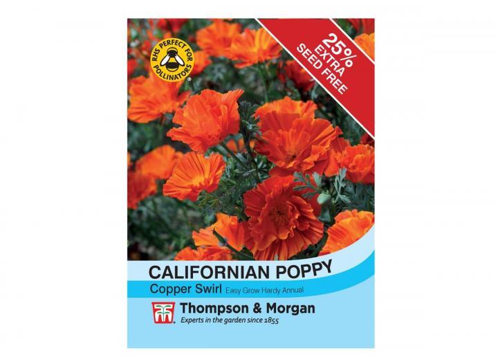 Californian Poppy 'Copper Swirl' seeds from Thompson & Morgan