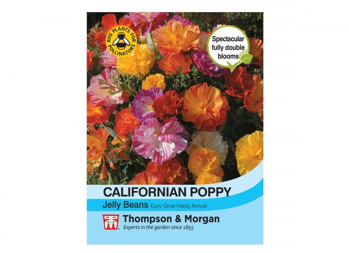 Californian Poppy 'Jelly Beans' seeds from Thompson & Morgan
