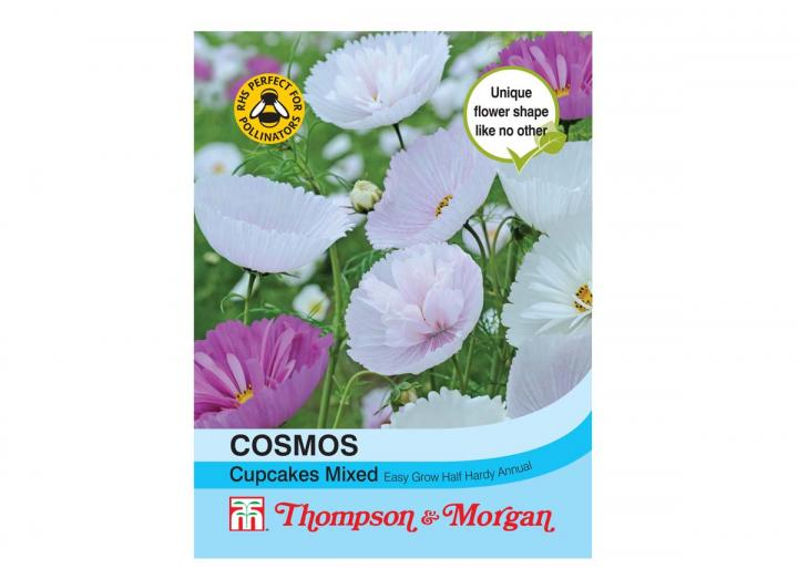 """Cosmos """"Cupcakes Mixed"""" seeds from Thompson & Morgan"""