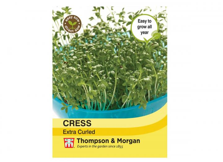 Cress Extra Curled seeds from Thompson & Morgan