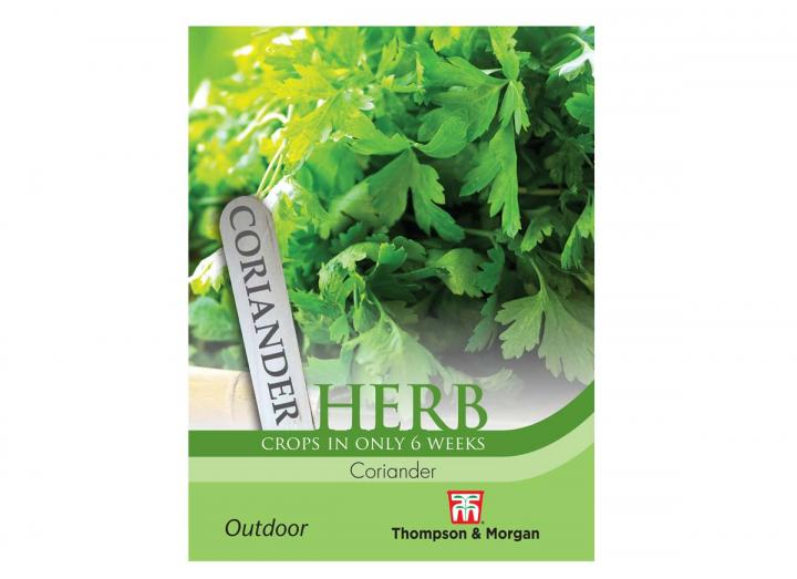 Coriander herb seeds from Thompson & Morgan