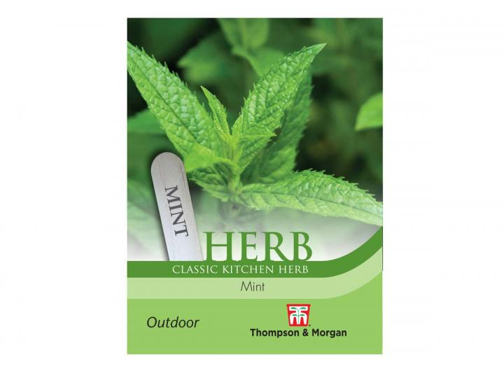 Mint herb seeds from Thompson & Morgan