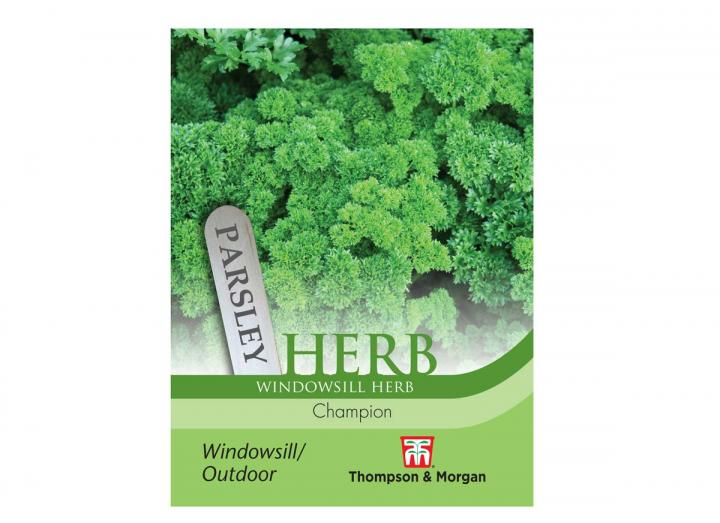"""Parsley """"Champion"""" seeds from Thompson & Morgan"""