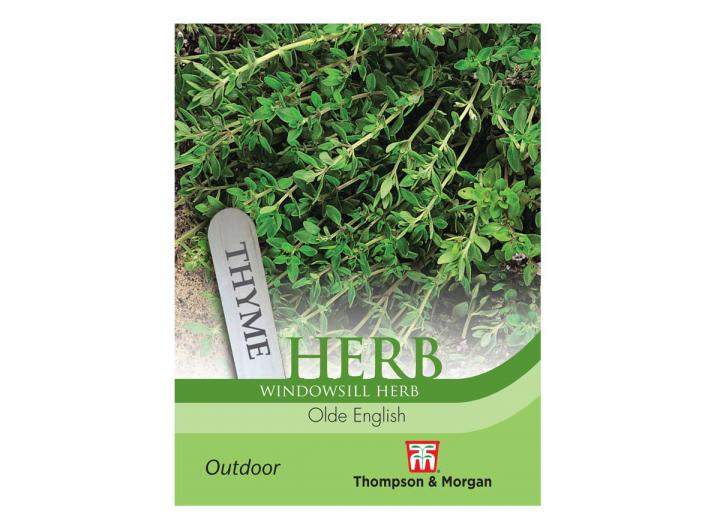 """Thyme """"Olde English"""" seeds from Thompson & Morgan"""