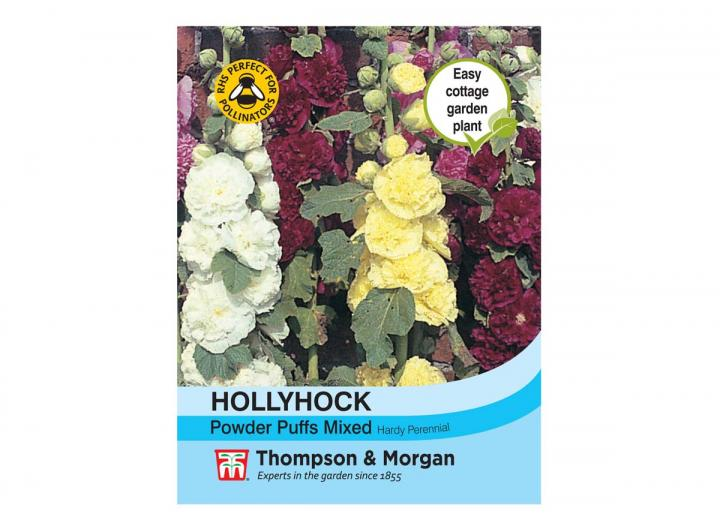 """Hollyhock """"Powder Puffs Mixed"""" seeds from Thompson & Morgan"""