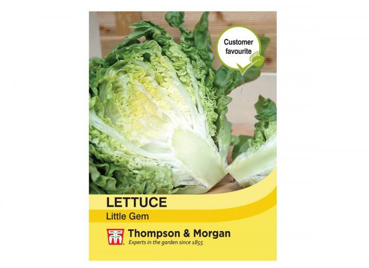 """Lettuce """"Little Gem"""" seeds from Thompson & Morgan"""