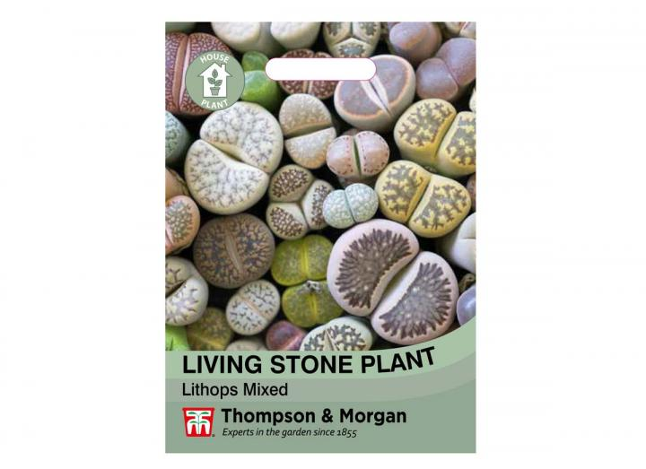 Living Stone Plant (Lithops Mixed) seeds from Thompson & Morgan