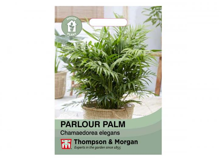 Parlour Palm house plant seeds from Thompson & Morgan