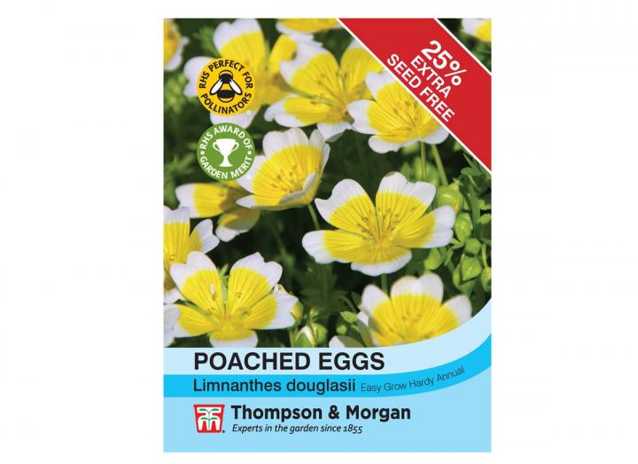 Poached Eggs seeds from Thompson & Morgan