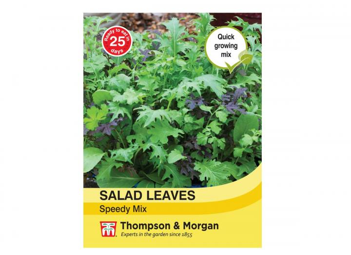 """Salad Leaves """"Speedy Mix"""" seeds from Thompson & Morgan"""