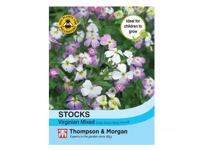 "Stocks ""Virginian Mixed"" seeds from Thompson & Morgan"