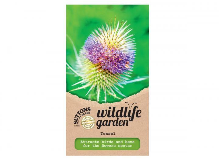 Suttons wildlife garden seeds - teasel