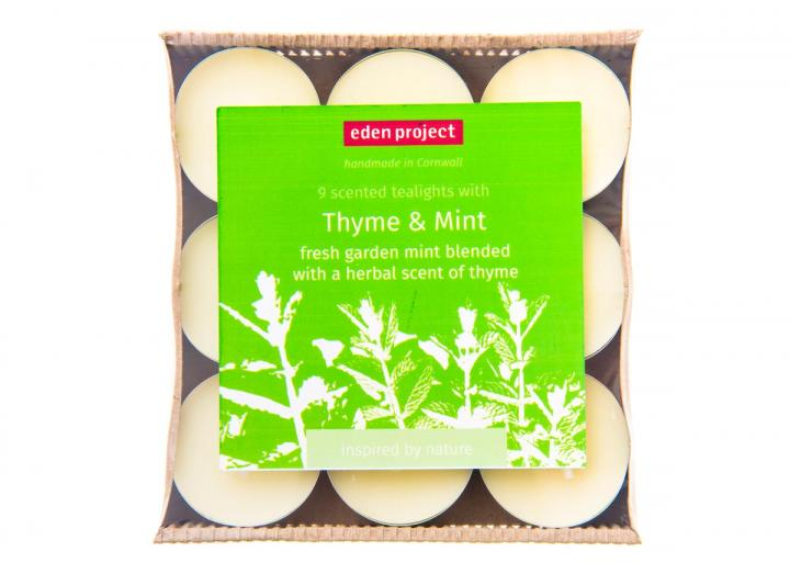 Thyme & mint scented tealights