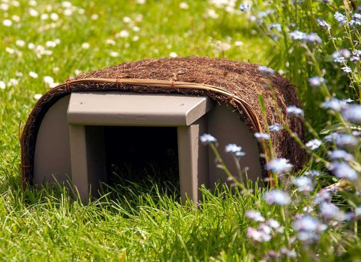 Timeless Hedgehog Haus from Wildlife World