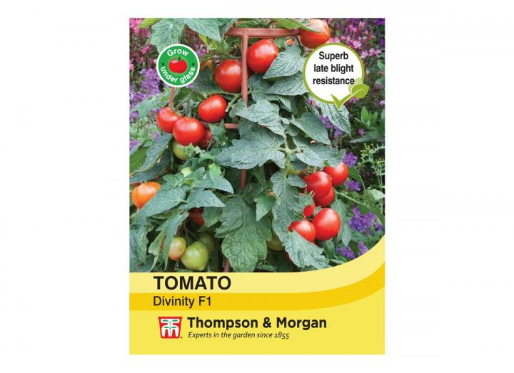 Tomato 'Divinity F1 Hybird' seeds from Thompson & Morgan