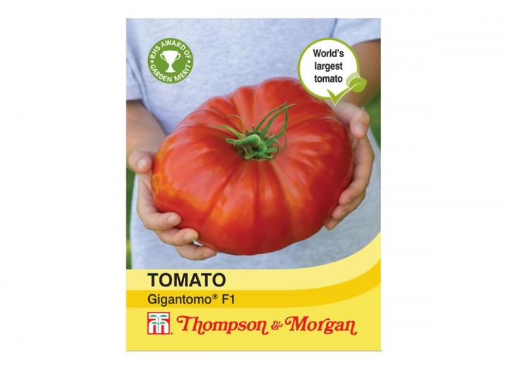 Tomato 'Gigantomo F1' seeds from Thompson & Morgan