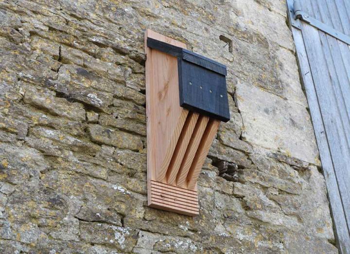 Vincent Pro Bat Box from Wildlife World