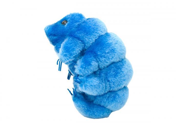Giant Microbes - Waterbear (Tardigrade)