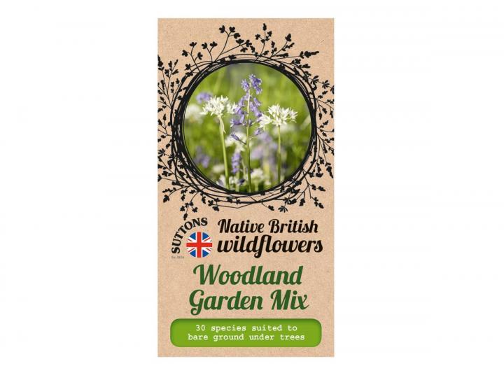 Native British wildflower seeds woodland garden mix