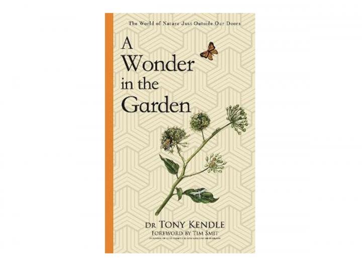 A wonder in the garden