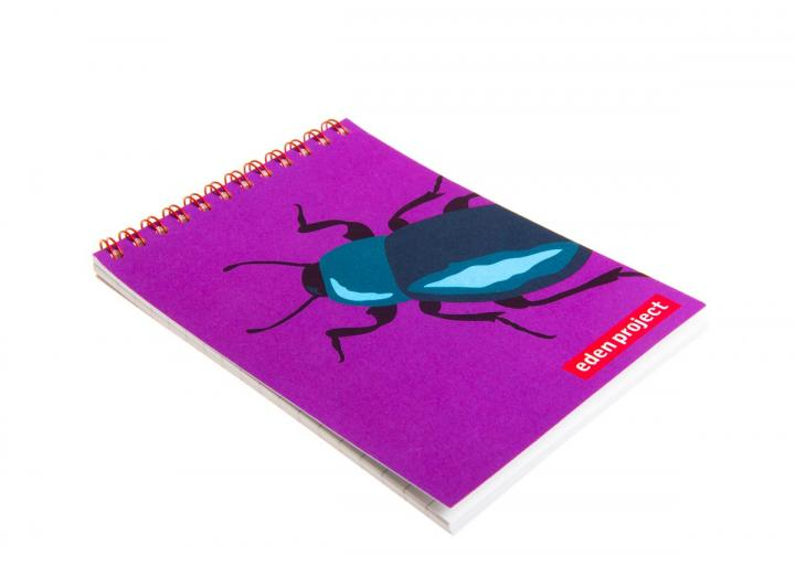 A6 Insect jotter beetle