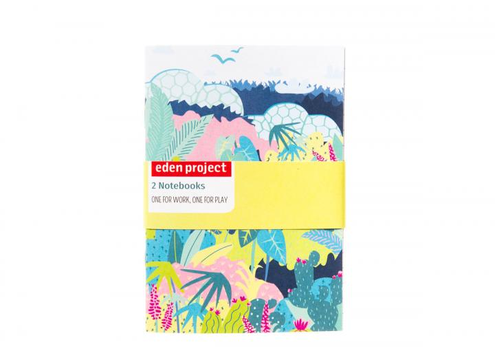 Biomes a6 two pack notebook
