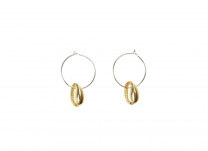 Brass cowrie earrings