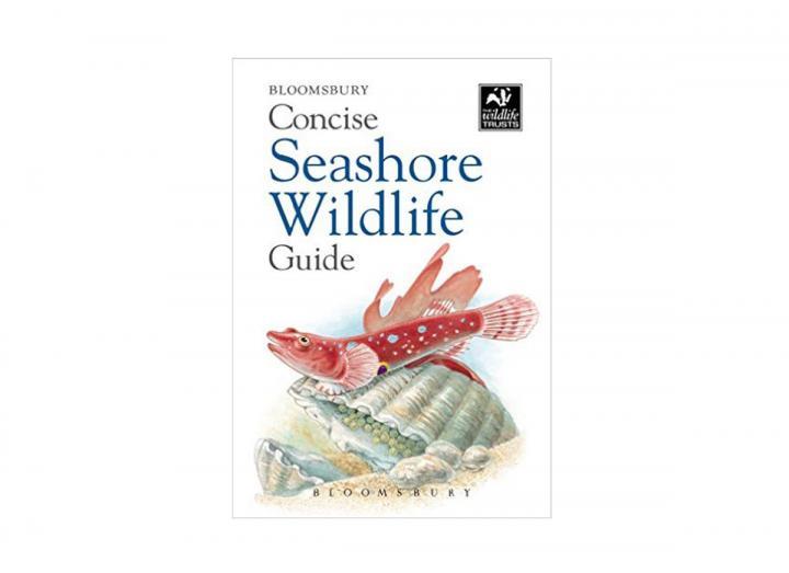 Concise seashore guide