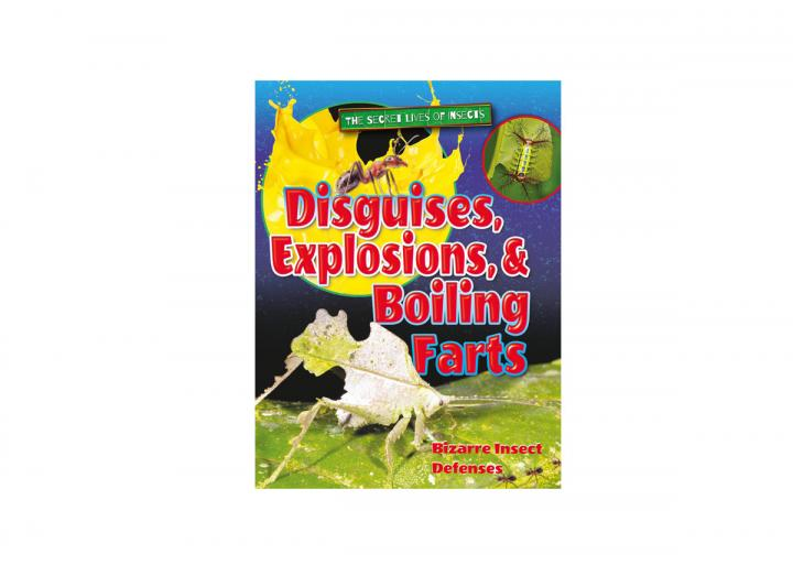 Disguises explosions and boiling farts