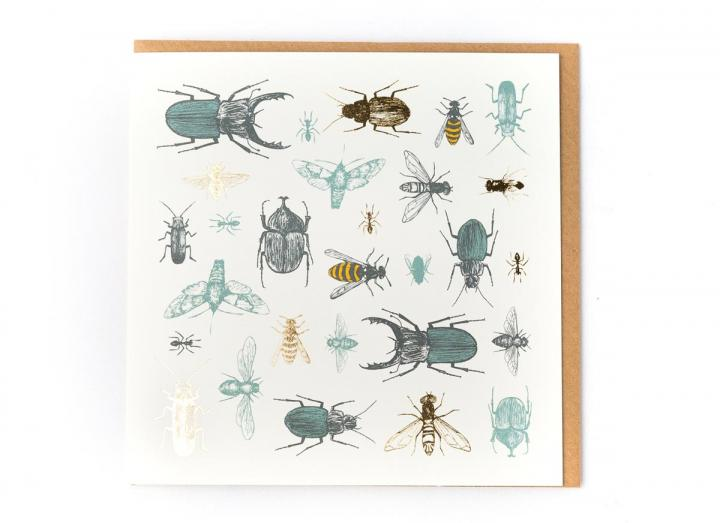 Eden Project insects card