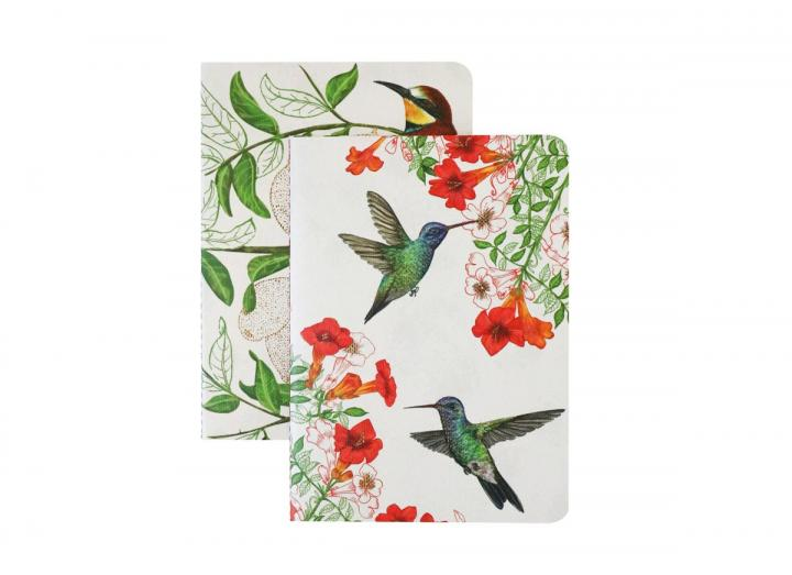 Eden Project set of two A6 notepads