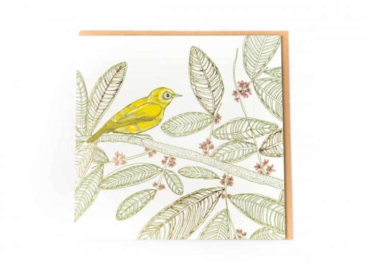 Eden Project sulawesi white-eye card