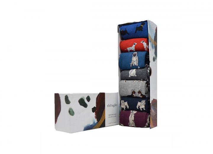 Men's canine sock box