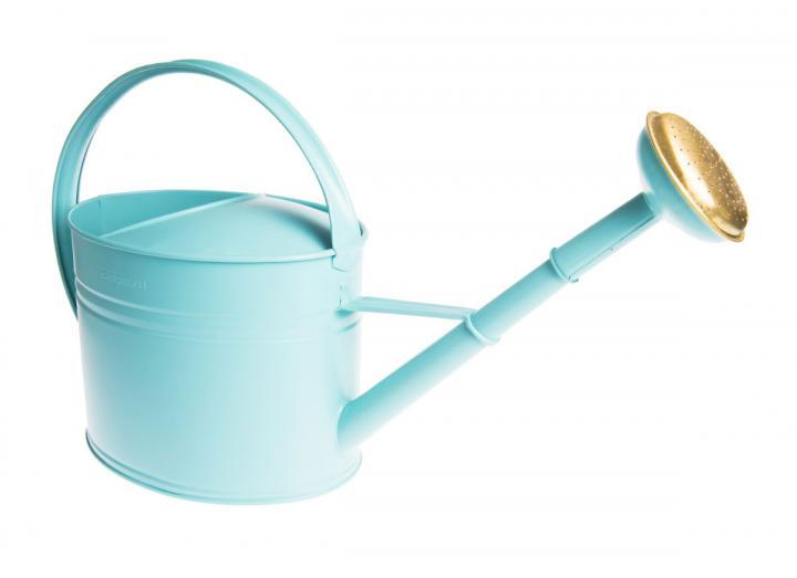 Aqua oval metal watering can