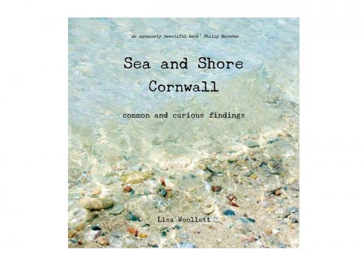 Sea and shore Cornwall