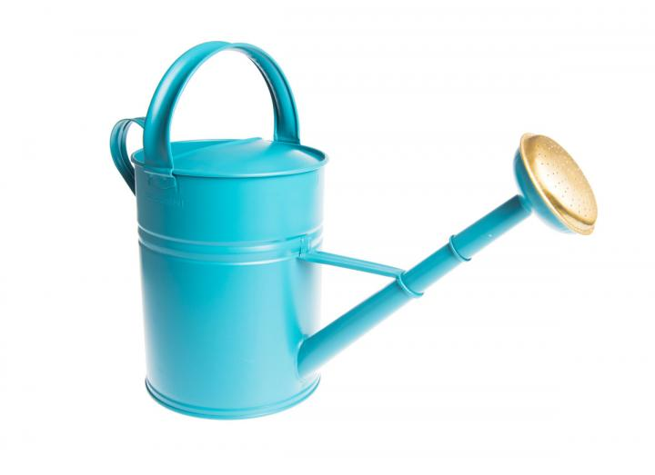 Tall teal metal watering can