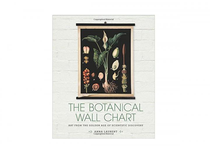 The botanical wall chart
